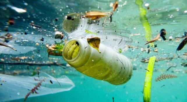 """Scoperto per caso un enzima """"mangia plastica"""". Nuova arma contro l'inquinamento dei mari"""