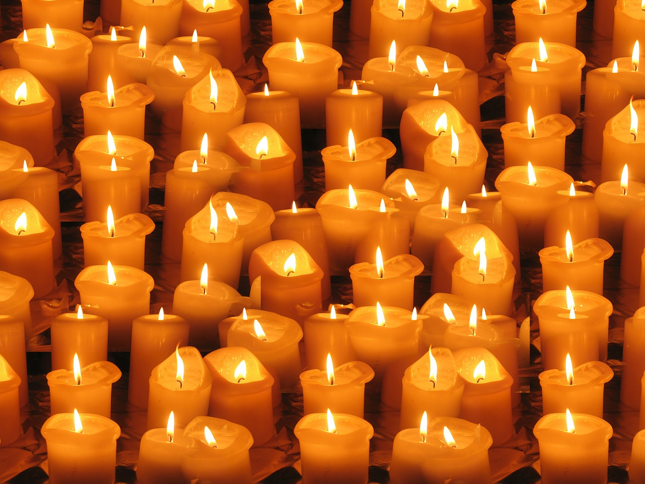 Frati Assisi festa Ognissanti